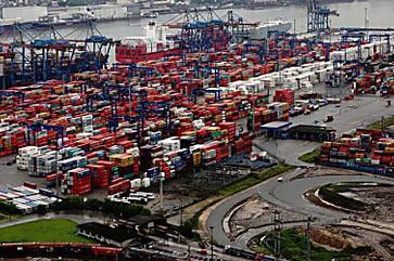Porto de Santos suspenderá embarques de animais vivos