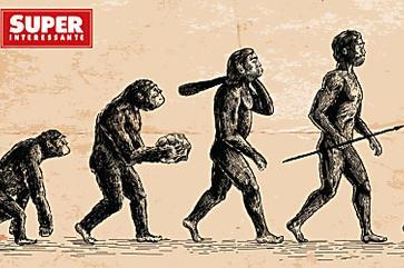 Estudo mostra o futuro da evolução humana – e ele não é ruim